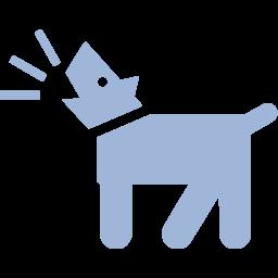 Dog Haus Home